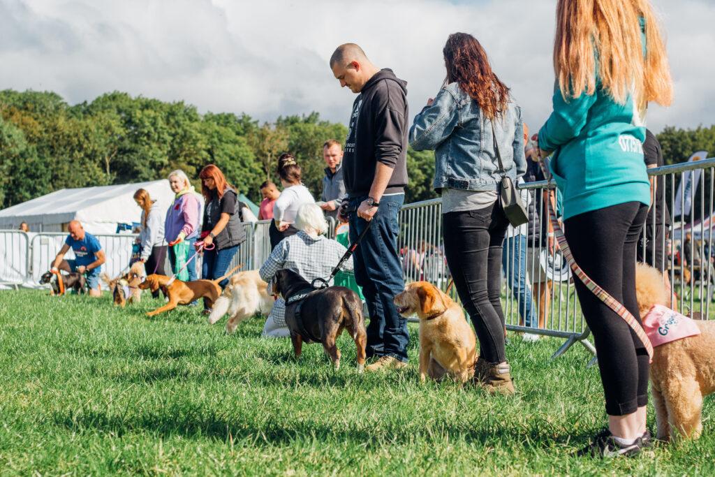 North East Dog Festival